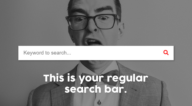 Regular Search Bar